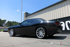 Dodge Challenger SRT8 with 22in Savini BM15 Wheels (Butler Tires and Wheels) Tags: dodgechallengerwith22insavinibm15wheels dodgechallengerwith22insavinibm15rims dodgechallengerwithsavinibm15wheels dodgechallengerwithsavinibm15rims dodgechallengerwith22inwheels dodgechallengerwith22inrims dodgewith22insavinibm15wheels dodgewith22insavinibm15rims dodgewithsavinibm15wheels dodgewithsavinibm15rims dodgewith22inwheels dodgewith22inrims challengerwith22insavinibm15wheels challengerwith22insavinibm15rims challengerwithsavinibm15wheels challengerwithsavinibm15rims challengerwith22inwheels challengerwith22inrims 22inwheels 22inrims dodgechallengerwithwheels dodgechallengerwithrims challengerwithwheels challengerwithrims dodgewithwheels dodgewithrims dodge challenger dodgechallenger savinibm15 savini 22insavinibm15wheels 22insavinibm15rims savinibm15wheels savinibm15rims saviniwheels savinirims 22insaviniwheels 22insavinirims butlertiresandwheels butlertire wheels rims car cars vehicle vehicles tires
