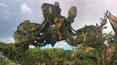 Welcome to Pandora (Thanks for over 2 million views!!) Tags: iphonecamera iphonese chadsparkesphotography pandora avatorflightofpassage animalkingdom disney disneyworld disneysanimalkingdom floatingmountains mountains