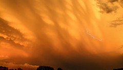 Sunset Mammatus Severe Storm (Dan's Storm Photos & Photography) Tags: thunderstorm thunderstorms thunderstormbase thunderhead thundershower skyscape skyscapes sky strongthunderstorm strongthunderstorms storm severethunderstorm severethunderstorms severestorm mammatus mammatusclouds mammatusdisplay sunset sunsets updraft updrafts weather wisconsin nature outdoors anvil anvils clouds cumulonimbus convection cumulus lightning lightningbolt lightningbolts lightningdisplay