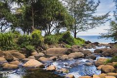 Hanakapi'ai Stream (Patrick.Burns) Tags: beach water island shore waves ocean kalalautrail napalicoast kauai hawaii rocks stream hanakapiaibeach