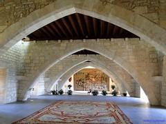 Palma de Mallorca (santiagolopezpastor) Tags: espagne españa spain baleares balears ballears islasbaleares illesbalears palace palacio medieval middleages gótico gothic