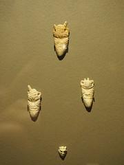 Musée national du Liban (Beyrouth) : amulettes protectrices trouvées à Byblos de l'âge du bronze (Bagolina) Tags: mort muséenationalduliban liban beyrouth