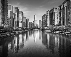 Trump Tower Chicago River Skyline (Mabry Campbell) Tags: 2013 aquabuilding aquatower chicago chicagoriver il illinois mabrycampbell september trumptower us usa unitedstates unitedstatesofamerica architecture blackandwhite building buildings cityscape downtown exterior exteriors fineartphotography image monochrome pano panorama photo photograph photographer photography reflection reflections river skyline skyscraper skyscrapers water
