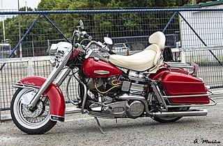 The Harley Davidson at rest. La Harley Davidson en reposo.