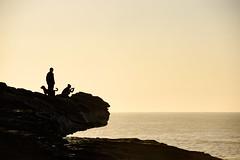 GOT YOUR BACK (scatrd) Tags: maroubra coastal country nikon mynikonlife nsw easternsuburbs australia jasonbruth newsouthwales nikond810 sydney d810 2017 mahonpool au