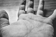 193-365 (danidelgado.es) Tags: adobe alicante canon contraste composition digital day eos 365 españa spain m10 exposicion expose film inspiracion art light inspiration luz photoshop project lightroom