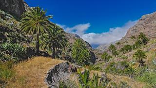 La Gomera - Barranco del Erque