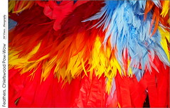 Feathers, Chiefswood Pow-Wow (jwvraets) Tags: powwow championofchampions grandriver chiefswood brantford firstnations dancers costume feathers redrule orangeandblue red yellow caledonia opensource rawtherapee gimp nikon d7100 afpnikkor70300mm