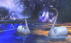 """Swan Lake"" (LoneSolitarian) Tags: second life secondlife sl virtual dark light shadow art firestorm gimp photography windlight photo sim 3d nature landscape scenery beauty romance serene swan blue"