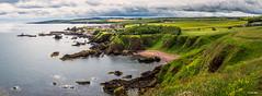 St Abbs Panorama - 2017-07-07th (colin.mair) Tags: abbs coast panorama rocks saint saintabbs sea stabbs village cliff coastline edge house seascape