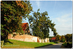 © • Usedom • (M.A.K.photo) Tags: mellenthin usedom ostsee balticsea germany deutschland nikon mecklenburgvorpommern eiche oak villagestreet september baum tree street dorfstrasse