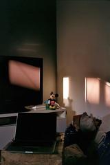 mickey (A l e _ J a n d r a) Tags: mickey juguete que tengo en casa al lado de la tele pero ese dia me hacia gracia luz entraba cuando estaba con esther y gador mi sofa living room house home light sculpture escultura es una hucha por detras barcelona raval