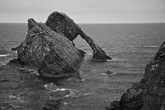 You Rock (4oClock) Tags: nikon d90 scotland morayfirth outdoor northsea northeast north icon famous portknockie bowfiddle rock arch monochrome blackandwhite bw water