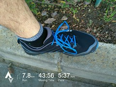 Inaugural run with my new @inov8sa #roclite280, going to need some more runnign in, but a pretty decent start. #inov8 #inov #running #runner #trailrun #stravaphoto #nature #fun #southafrica #tomtom #tomtomadventurer #fitness #trails #outdoorsports #strava (Reme Le Hane) Tags: inaugural run with new inov8sa roclite280 going need some more runnign but pretty decent start inov8 inov running runner trailrun stravaphoto nature fun southafrica tomtom tomtomadventurer fitness trails outdoorsports stravarun runsa runninglife resultsstarthere for teamspca capespca ctmarathon peace trail this september if you would like support fundraising project great cause please checkout link bio any much appreciated d
