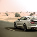 "2017_ford_mustang_california_special_review_dubai_carbonoctane_12 • <a style=""font-size:0.8em;"" href=""https://www.flickr.com/photos/78941564@N03/36094884402/"" target=""_blank"">View on Flickr</a>"