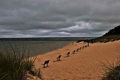 Lonely Beach (Jan Nagalski) Tags: clouds overcast rain darkclouds windy weather beach sand benches breakwater deserted lonely water lakemichigan frankfort michigan summer july jannagalski jannagal perspective repetition dark hill dunes