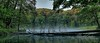 Ogle Lake (Mark-Cooper-Photography) Tags: canon m6 eos efm 1122mm mark cooper photography indiana brown county nashville 22mm f11 long exposure hdr fallen tree lake mist ogle