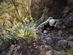 The hard yards (flashmick) Tags: mt maroon mountain bushwalk queensland rock vegetation track gully