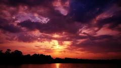 Most of the shadows of this life are caused by standing in one's own sunshine.  Check out @jet7black and @jet7black_wildlife On IG (Jet7Black) Tags: sunshine californiasunset sunrise sunday texassunset sundayfunday sunrays floridasunset idahosunset yellowstonesunset sunny sunburst sunset utahsunset sunsets montanasunset sun flickr instagram twitter yahoo facebook snapchat tumblr texas texasbeach texasstatepark texaslife texastodo texasmonthly texaswildlife visittexas texassky texasparkswildlife southtexas floridawildlife southflorida floridakeys floridasky floridalifestyle florida floridabeach naplesflorida visitflorida floridalife paris greece red blue green purple orange oregon orlando houston australia austin dallas sanantonio santamonica jet7blackwildlife jet7black yellowstone yellow skyscape skylights skyscraper skyline bigskycountry sky cloud clouds cloudy storm stormy