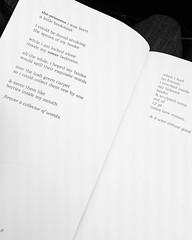 Same... #BookMad #theprincesssavesherselfinthisone #poetry #amandalovelace (PTank Media Center) Tags: same bookmad theprincesssavesherselfinthisone poetry amandalovelace