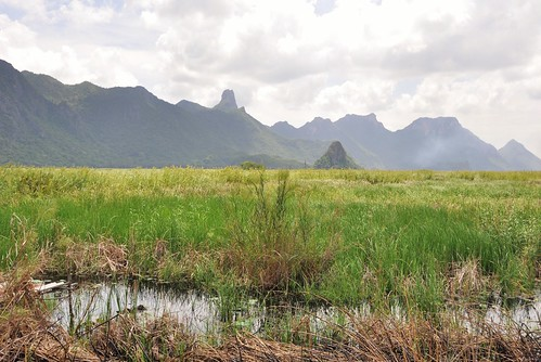 parc national sam roi yot - thailande 56