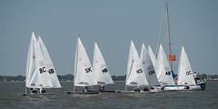 2017-07-31_Keith_Levit-Sailing_Day2040.jpg (2017 Canada Games // Jeux du Canada 2017) Tags: keithlevitphotography gimli gimliyachtclub canadasummergames interlake laser winnipeg manitoba singlehandedlaser sailing