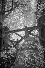 The forbidden forest, Dartmoor. (Infrared) (Sean Hartwell Photography) Tags: cosdonhill dartmoor devon southzeal gate pixies enchanted forbidden forest magical ir infrared blackandwhite monochrome canoneosm landscape westcountry woodland woods