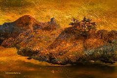 THE GOLDEN ROCK. (Viktor Manuel 990.) Tags: rocks rocas golden dorado sea mar digitalart artedigital querétaro méxico victormanuelgómezg textures texturas