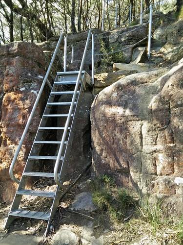 Ladder up Mount Kembla Summit Track
