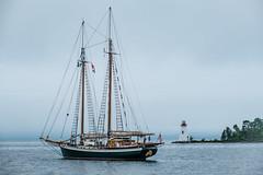 "Schooner ""Tree of Life"" (ronperry811) Tags: newport seascape lighthouse schooner treeoflife novascotia"