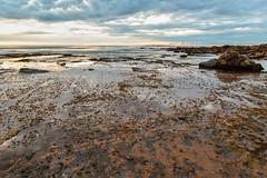 Cloudy Sunrise Seascape (Merrillie) Tags: daybreak sand landscape nature water newsouthwales rocks nsw beach scenery clouds newport earlymornings waterscape sea australia dawn seascape