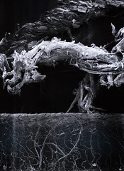 Le rêve des formes (Touristos) Tags: ecole fresnoy le rêve des formes art contemporain adrienmissika alainfleischer annicklesnejulienmozziconacci arnaudpetit bertranddezoteux brunogironcoli clémentcogitore damiencadio dorabudor fabiengiraudraphaëlsiboni francisalÿs hichamberradasylvaincourrechdupontsimondedreuille hugodeverchère jeanfrançoispeyretalainprochia jeanlucmoulène jonathanpêpethibautrostagnatdavidchavalarias juliancharrière juliettebonneviot katjanovitskova mariejeannemusiol michelblazy mimosaechard olivierperriquetjeanpauldelahaye palaisdetokyo paris patrickjouin ryoichikurokawa spiroshadjidjanos sylviechartrand artcontemporain