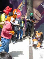 DSC01869 (Thanriu) Tags: furry leon lion fursuit angel dragon canid canino fox zorro wolf lobo wicker wickerbeast bunny conejo traje suit friends amigos junta meet sergal head furhead dibujo drawing