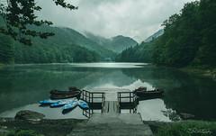 Biogradsko lake (szugic) Tags: biogradskolake lake water jungle forrest trees mist fog reflection montenegro crnagora