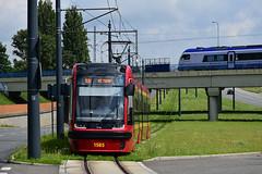 Pesa 122NaL #1585 MPK Łódź (3x105Na) Tags: pesa 122nal 1585 mpk łódź mpkłódź polska poland polen strassenbahn strasenbahn tram tramwaj
