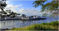 Paisagem carioca (o.dirce) Tags: paisagem mar cidade enseada botafogo flamengo bairro riodejaneiro odirce