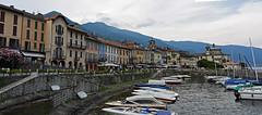 Cannobio (Vb) Piemonte, Italia (frank28883) Tags: cannobio verbanocusioossola verbano porto barche lungolago lagomaggiore lakemaggiore lacmajeur langensee paesaggiolacustre