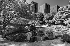 (Pete Rocks) Tags: japan summer 2014 tokyo nikon d7000 1116mm tokina park