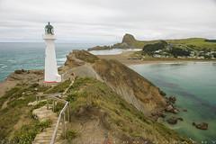 CastlePoint lighthouse from the summit (T Ξ Ξ J Ξ) Tags: newzealand wellington castlepoint d750 nikkor teeje nikon2470mmf28