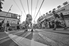CROSSING (ajpscs) Tags: ajpscs japan nippon 日本 japanese 東京 tokyo city people ニコン nikon d750 tokyostreetphotography streetphotography seasonchange summer natsu なつ 夏 street shitamachi monochromatic grayscale monokuro blackwhite blkwht bw blancoynegro othersideoftokyo strangers blackandwhite monochrome urban walksoflife 白&黒 streetoftokyo crossing