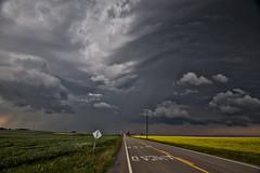Stop Ahead Storm (John Andersen (JPAndersen images)) Tags: airdrie alberta canola clouds crossfield fence mesocyclone rain road smoke storm sunset