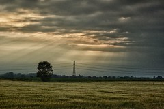 Storm Clouds (joelculver1) Tags: grimsby storm light clouds field rays tree pylons graduated grainy isograin helios 44 nix