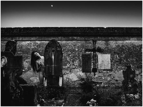 "Navarro_della_miraglia-1-3 • <a style=""font-size:0.8em;"" href=""http://www.flickr.com/photos/66892866@N06/35321024543/"" target=""_blank"">View on Flickr</a>"
