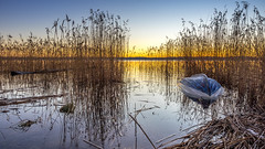 Derelict (Jens Haggren) Tags: derelict sunrise morning boat jetty sea water reflections sky colours reed silhouettes view landscape nacka sweden