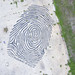 Fingerprint of God