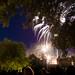 Feu d'artifice du 14 juillet aux chateau des ducs de Bretagne - Nantes (4)