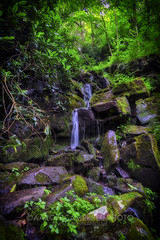 Trailside Cascade, 2017.07.13 (Aaron Glenn Campbell) Tags: cascades water slowshutter lush greenery rhododendron moss outdoors nature optoutside meetthemoment lehighgorgestatepark carboncounty pennsylvania 3xp ±2ev hdr macphun aurorahdr2017 luminar nikcollection viveza colorefexpro sony a6000 ilce6000 mirrorless rokinon 12mmf2ncscs wideangle primelens manualfocus emount tiffen ndfilter neutraldensity kiddertownship