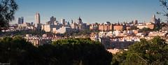 229 años después... (Eugercios) Tags: madrid skyline cityscape ciudad city cidade scenic urbanview españa espanha europa europe spain comunidaddemadrid pradera goya san isidro line colours color