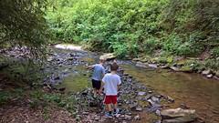 Asheville (heytampa) Tags: asheville biltmore biltmoreestate conner paxton hey stream brook