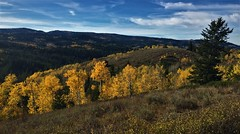 Autumn in the Bridger Mountains (The VIKINGS are Coming!) Tags: autumn fall colors foliage wilderness alpine